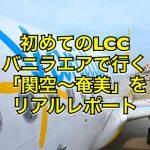 初めての格安航空バニラエアで行く関空〜奄美大島リアルレポート